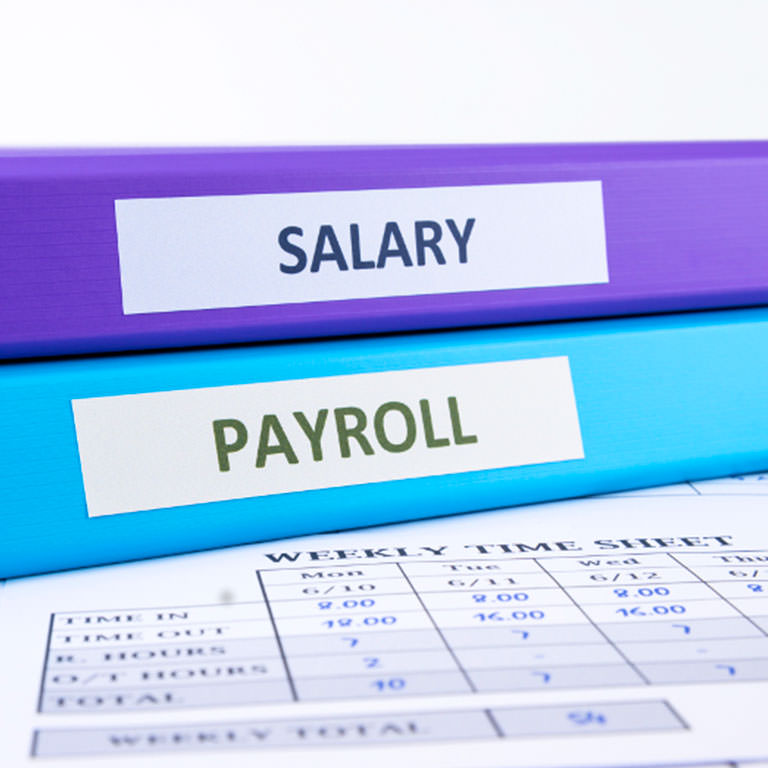 CPA Payroll Services